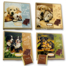 Pes - čokoládový dárek..