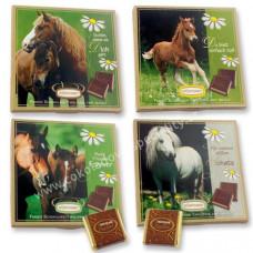 Čokoládový dárek - kůň..